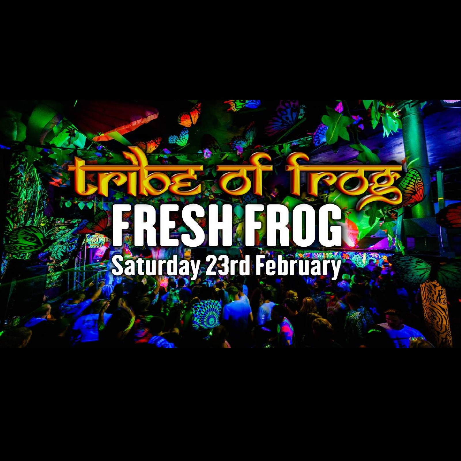TRiBE of FRoG – Fresh Frog!